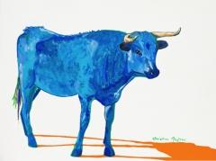 Blue Blue Cow