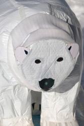 Polar-Bear-Head