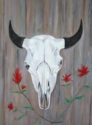 Buffalo Skull And Indian Paintbrush